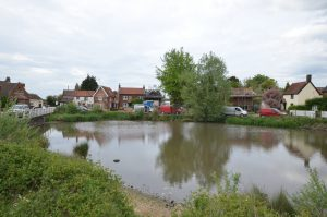 Mulbarton pond