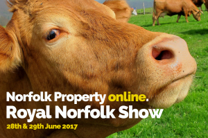 a close up photo of a brown cows head with text advertising the Royal Norfolk Show