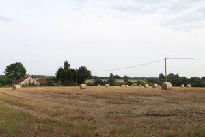 garvestone landscape